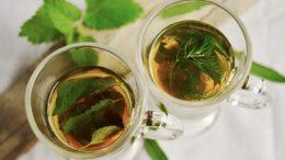 Léčivé bylinky pro zimní čas